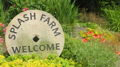 Splash Farm, DE4 5AF