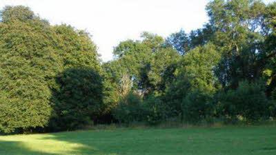 Freemantle Park Farm, RG26 5UD, field, trees
