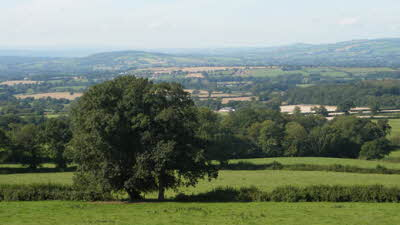 Beer Farm, EX14 3LE, Honiton, Devon