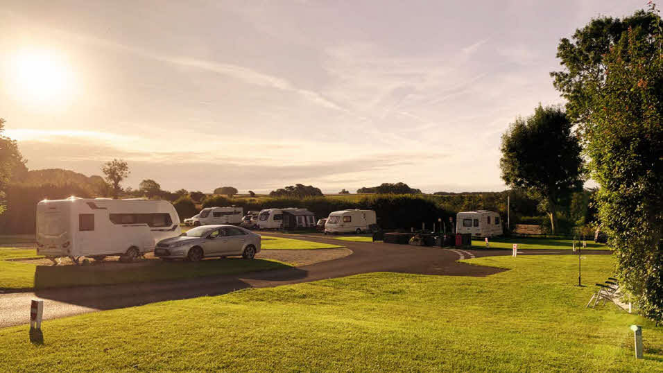 caravn site showing parked cars,caravans and trees in sunshine