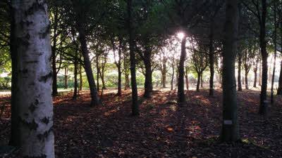 Heritage Wood, DE6 3AE, Ashbourne, Derbyshire