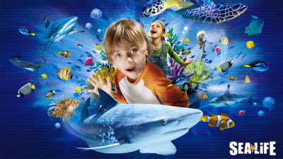 Offer image for: National SEA LIFE Centre Birmingham - Pre-booking required online up to 32% discount