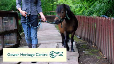 Offer image for: Gower Heritage Centre - Two for the price of one