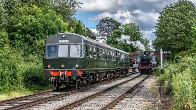 Offer image for: Ecclesbourne Valley Railway - Two for One on Adult Day Rover tickets