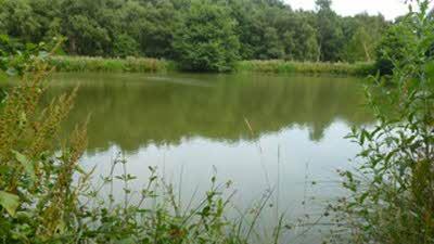 Salterford Dam CL, NG14 6NZ, Nottingham, Nottinghamshire
