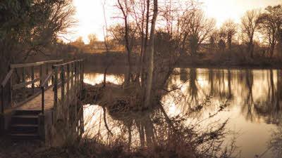 Swan Lake, IP30 9QS, Stowmarket, Suffolk