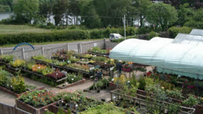 Thornton Nurseries, LE67 1AN