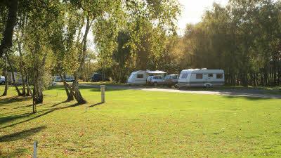 Clumber Park Caravan Amp Motorhome Site The Caravan Club