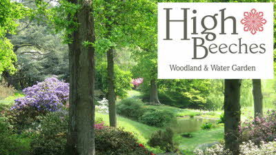 Offer image for: High Beeches Woodland and Water Garden - 10% discount off admissions.