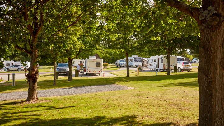 Bearsted Club Site | The Caravan Club