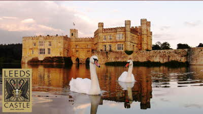 Offer image for: Leeds Castle - 20% off admissions.