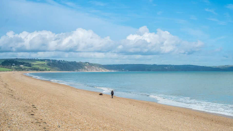 Lone dog walker on sun-drenched Slapton Sands beach