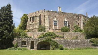 Offer image for: Berkeley Castle - 25% off entry.