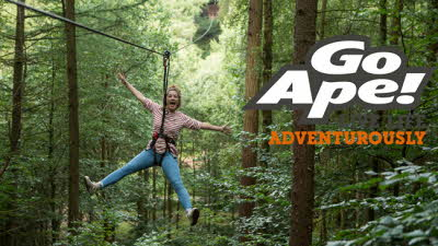 Offer image for: Go Ape - Margam - Swing by and save 10% on a Tree Top Adventure