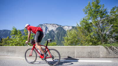 A La Rencontre du Soleil, M19, Rhone-Alpes, France, Overseas, 2021, mountain, bicycle, cyclist, road, trees