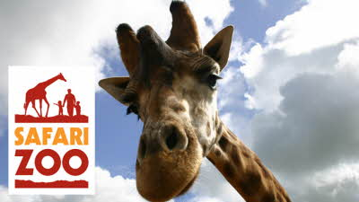 Offer image for: Safari Zoo - Buy one get one free on full paying adult tickets