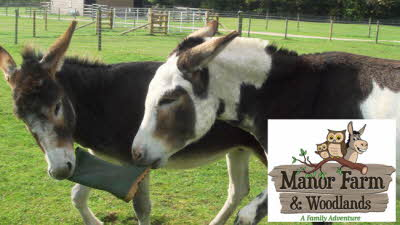 Offer image for: Manor Farm Park & Woodlands - One free child when accompanied by one full paying adult