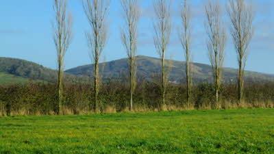 Appledore Farm, BS24 0BY