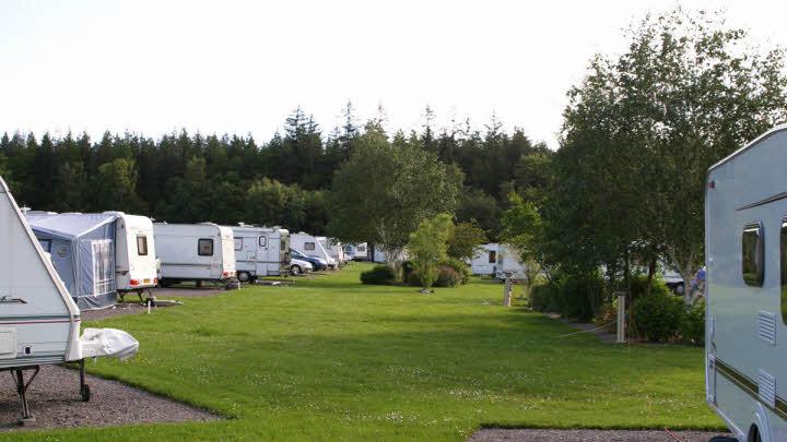 Culloden Moor Club Site | The Caravan Club