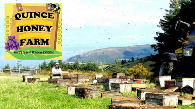 Offer image for: Quince Honey Farm - 25% off admissions