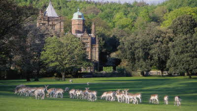 Offer image for: Holker Hall & Gardens - Two for the price of one