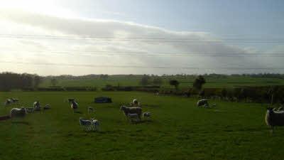 Bank Head Farm, DL6 3TQ