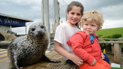 Offer image for: Blue Reef Aquarium - Tynemouth - £2.00 off per person for up to 6 people