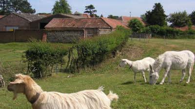 Cavick House Farm, NR18 9PJ