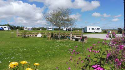 Dunree Certificated Location, PL33 9DY, Cornwall, Camelford, CL owner, 2020, pitch, caravans, grass, cars, awning, flowers