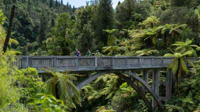 NZ Tour