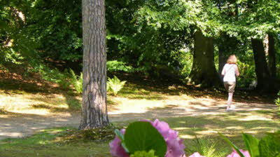 Offer image for: Fairhaven Woodland and Water Garden - Two for the price of one