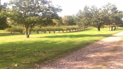 Hollow Meadow, CV37 0QF, Warwickshire, Stratford-upon-Avon
